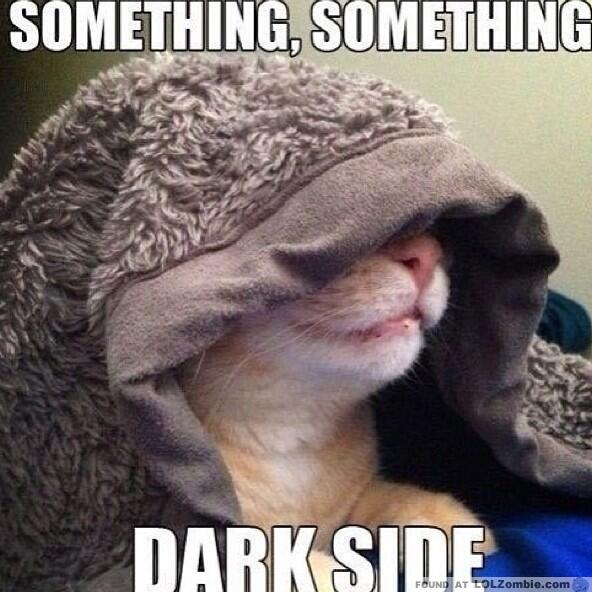 darkside cat