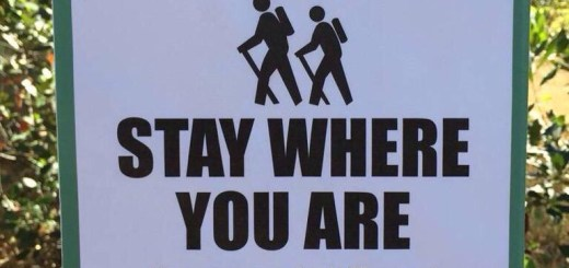 Stay Where You Are