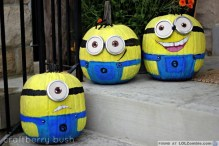 despicable-me-minion-pumpkins