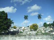 Cementerio de San Fernando