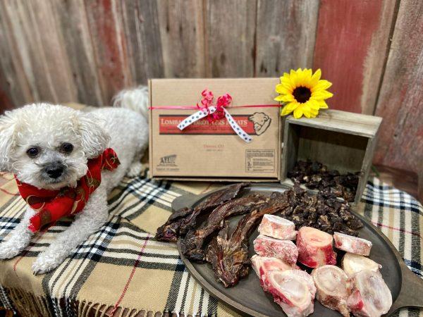PAWSome Dog Box