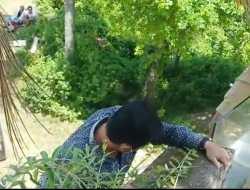 Eksekusi Lahan di Villa PT The Hill, Juru Sita PN Mataram Terpaksa Panjat Tembok