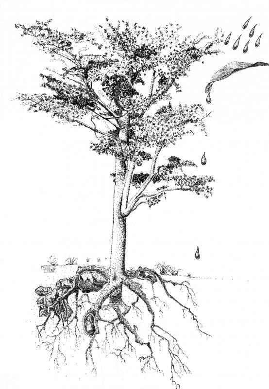 Scène pointilliste botanique