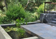 Modern Water Feature Pond