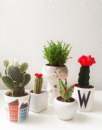 tiny cactus decor | http://lomets.com