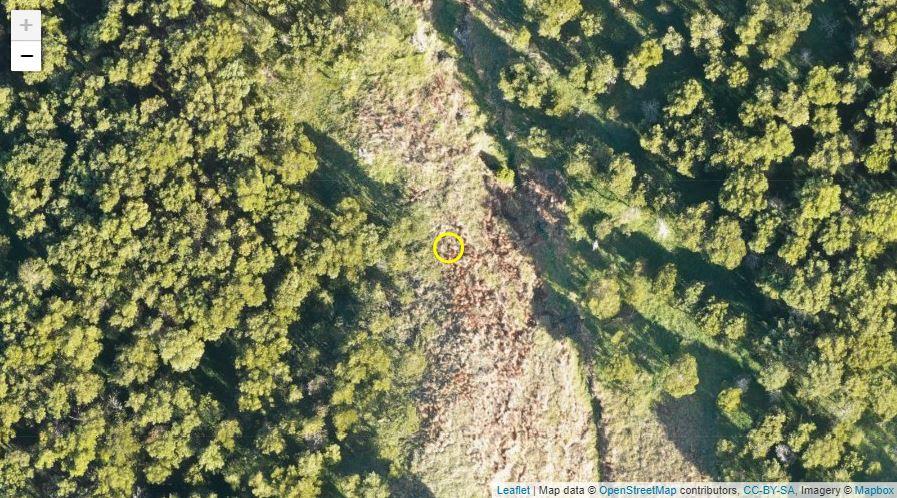 GPSで植樹した木の場所を見る