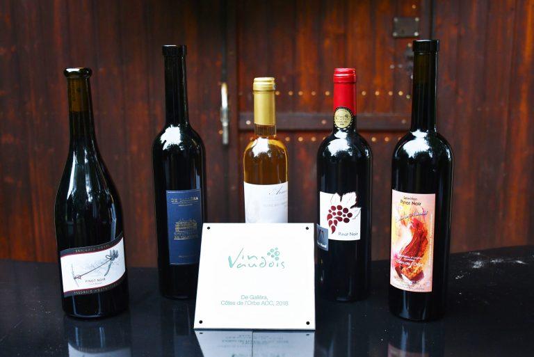 Vignerons récompensés : Plusieurs médailles récompensent la qualité des vins régionaux