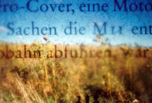 Buchfilter (8)