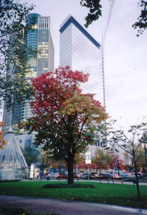Bunter Herbst in Frankfurt.