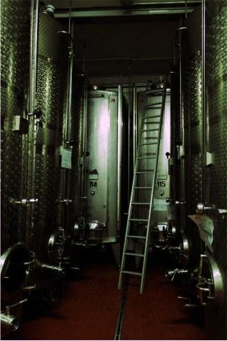 Kellerei Rottensteiner - moderne Weinfässer