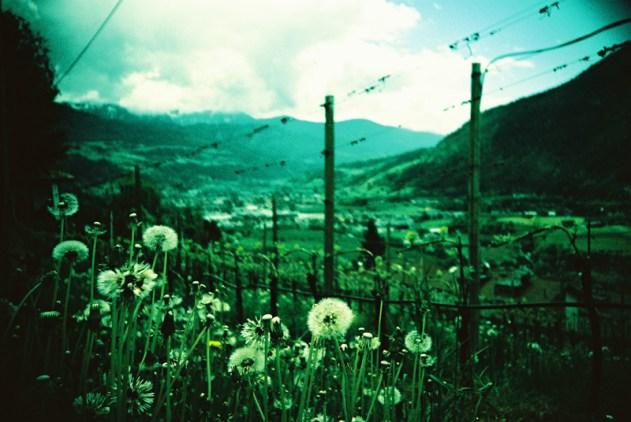 LomoRoadtrip Südtirol Tag 3 (14)