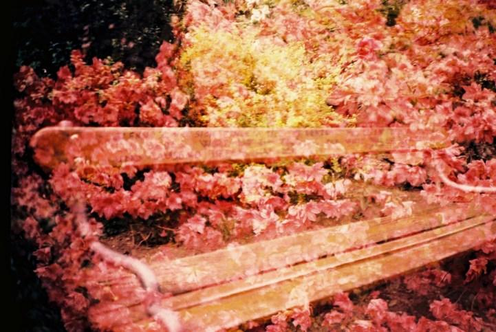 """Doppelbelichtung auf der """"Promenade der Poesie"""""""