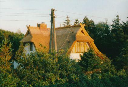 5 liebste Orte in Deutschland - Fischland (c) Lomoherz