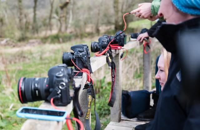 Cameras and TriggerTraps