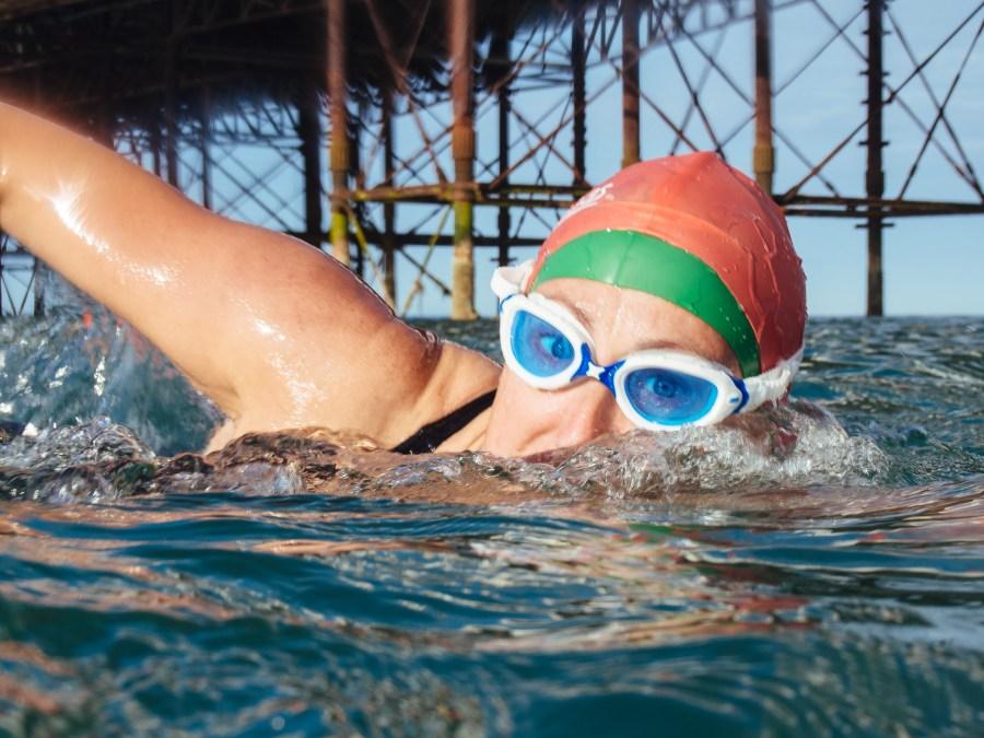 Midge Brighton Swimming Club Member
