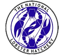 National_Lobster_Hatchery