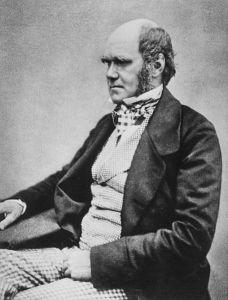 Charles Darwin and Louis Agassiz