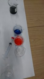 Cohort 3 learn about environmental pollution at Brunel. Image by Alice Carter-Champion.