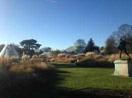 Kew Gardens for Biodiversity training. Image by Leif Bersweden.