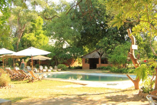 Croc Valley Camp, South Luangwa