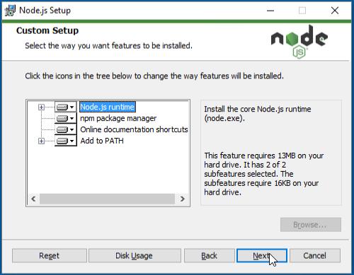Node.js custom setup
