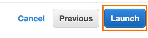 Screenshot of Launch option.