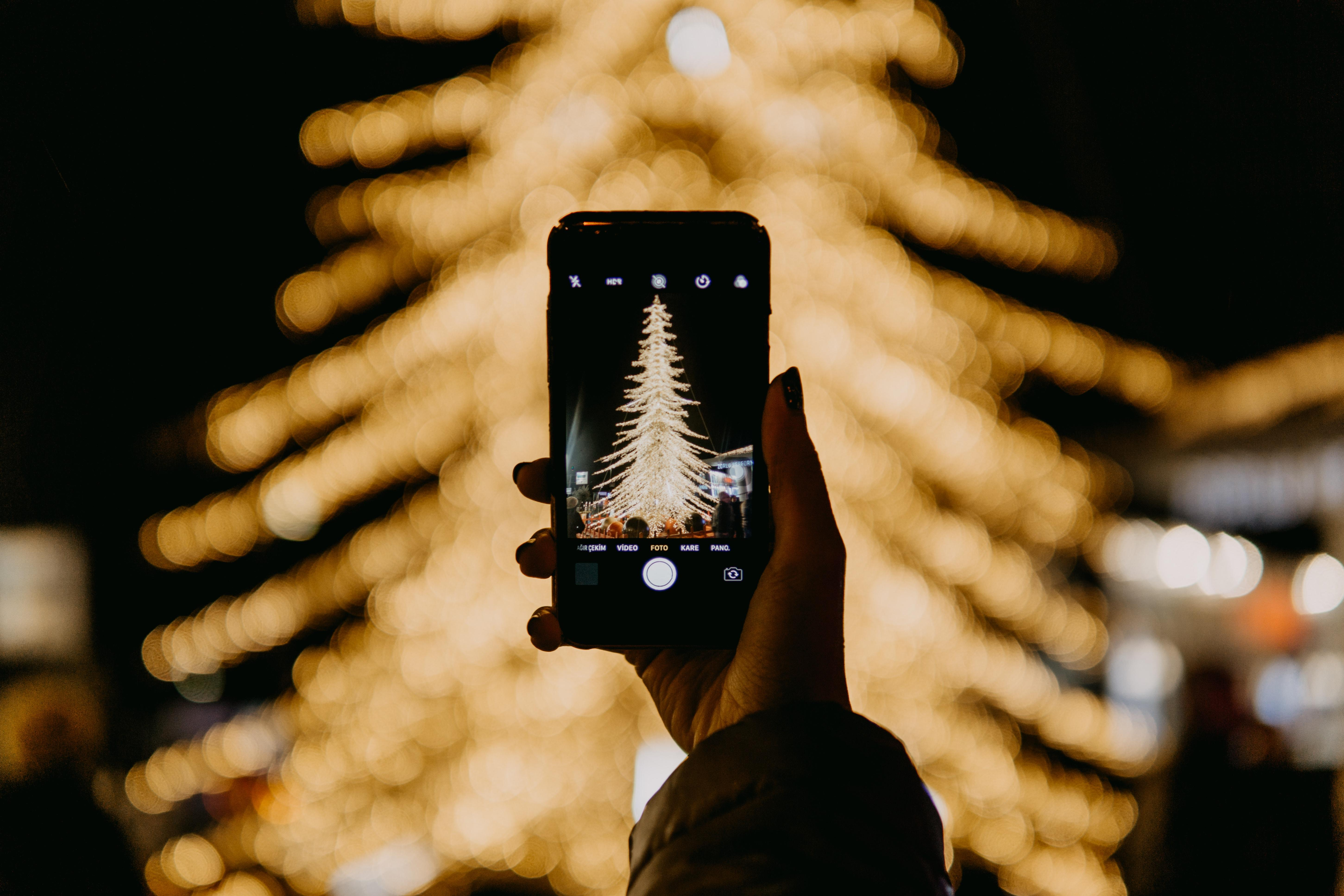 Someone raises their phone to take a photo of a christmas tree