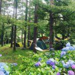 キャンプにはまる我が家ーキャンプデビューから1年