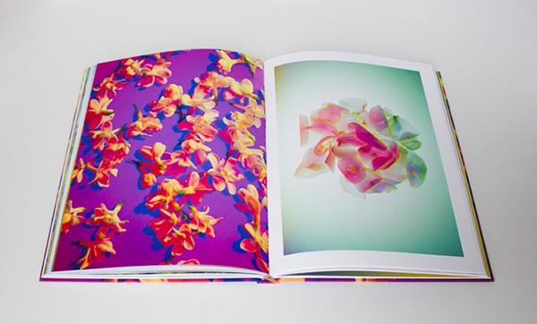 Poetic herbarium/Still life