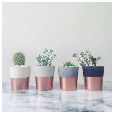 Concrete and copper planters