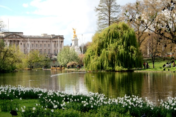 Gardens - Winter To Summer - Buckingham Palace