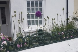 White Wooden Sash Windows With Purple Alium in garden