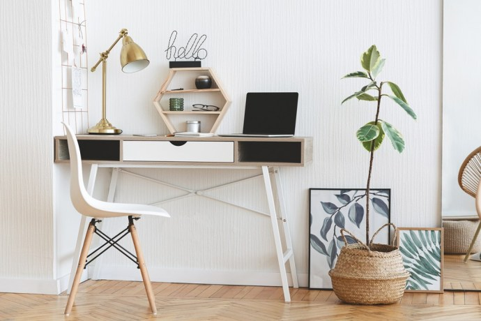 Small desk and potted plant
