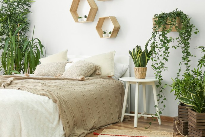 Calm white bedroom with greenery/plants