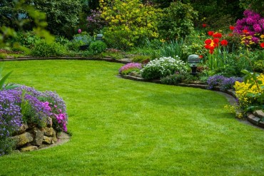 Garden with lawn and flowered boarders