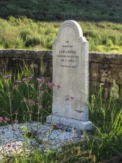 Van Reenen Graveyard, Golden Gate National Park