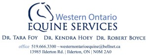 Western ON Equine services logo