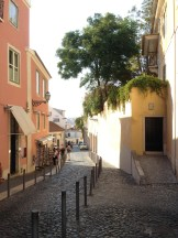 Magical winding lanes in Alfama, the neighborhood below Castelo St. Jorge.