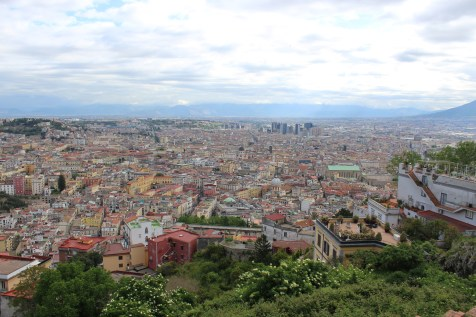 View from the castle hill