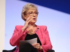 Andrea Leadsom, House of Commons, Conservative Party, Politics, Brexit, EU, Referendum