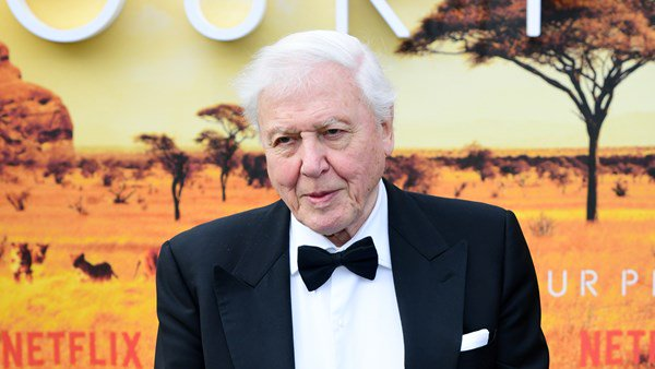 David Attenborough, Alastair Fothergill, Netflix, Entertainment