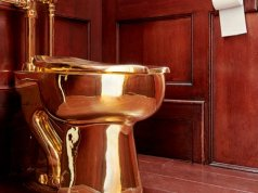 Solid gold toilet artist denies having the artwork stolen