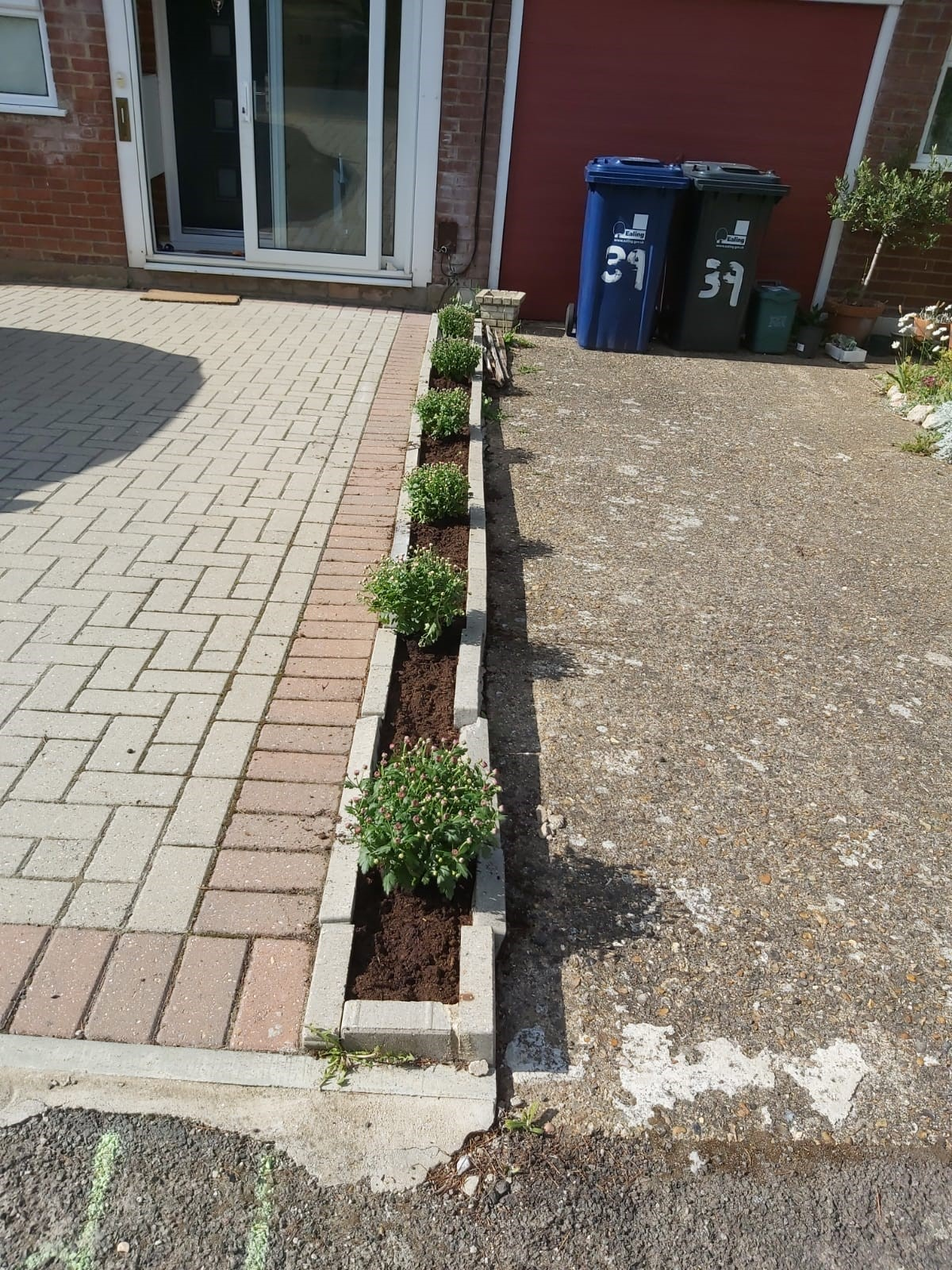 Best Mini Garden: Indrajit at Calthorpe Project