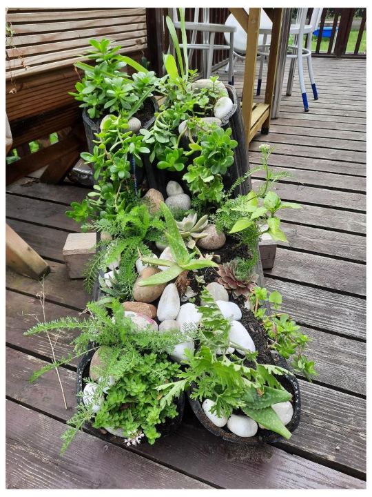 Quirkiest Container winner - Calthorpe Community Garden