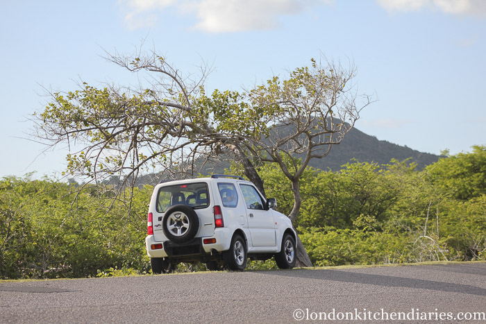 Exploring St Lucia by Car
