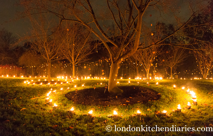 Kew Gardens, torches, Christmas