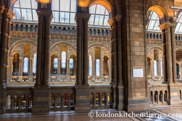 National History Museum-114