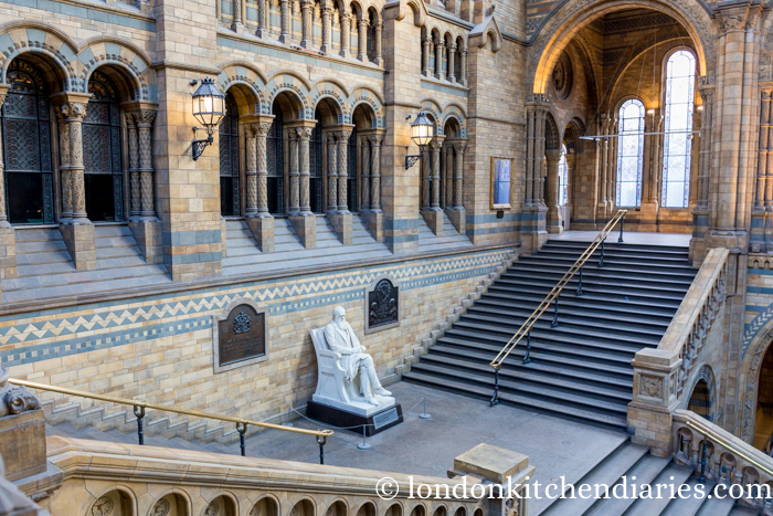 Charles Darwin Statue on of the stairs, Hintze Hall