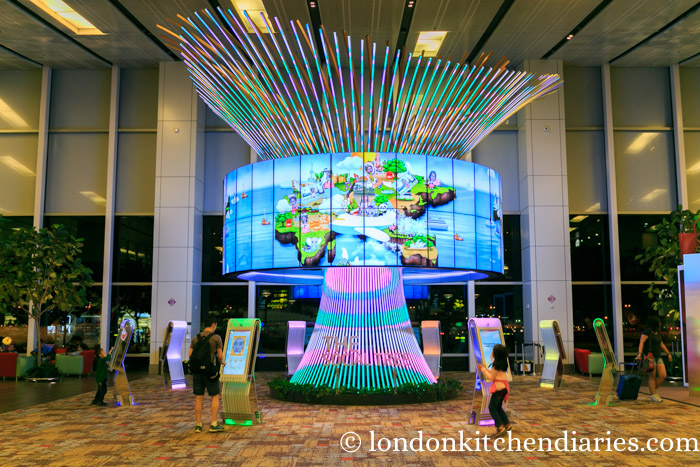 social tree at changi singapore airport
