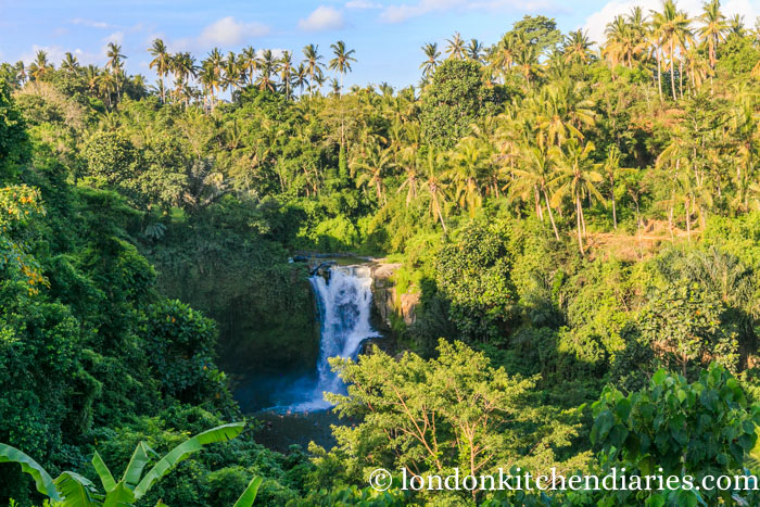 View of Tegenungan Waterfall in Bali